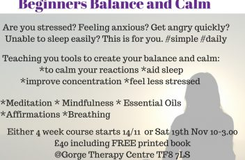 beginners-balance-and-calm
