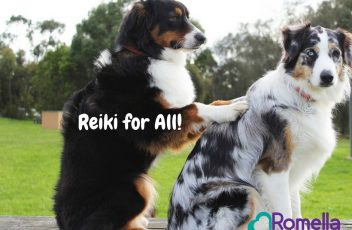 Reiki for All!